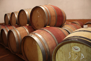 Krolo winery barrels