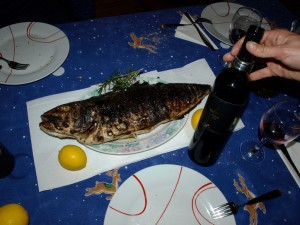 wine and fish croatia