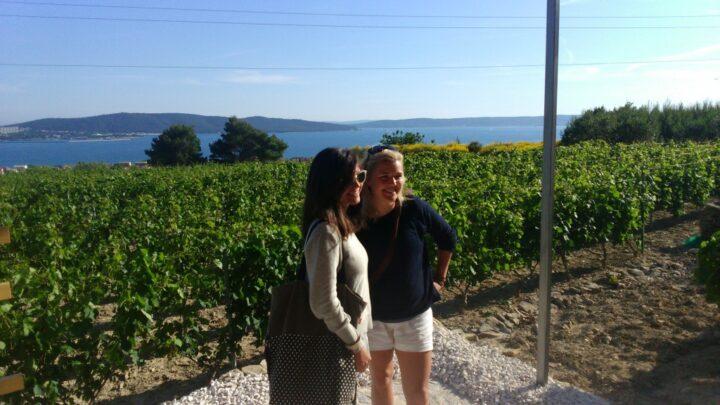 Putalj Winery Tour